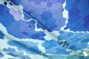 Bubble_detail_3_ Iris_van_Daalen 2