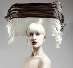 crown_graphical_hair_iris_van_daalen-web