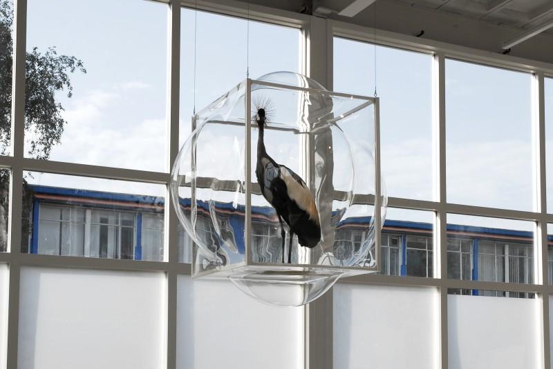 StudioThier&VanDaalen-CuratorCabinet_v3-DDW12-hanging_cabinet-2