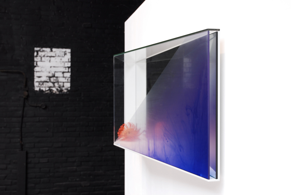 Translucent Mirrors - Studio Thier&VanDaalen Wall mirror